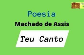 poesia Teu Canto